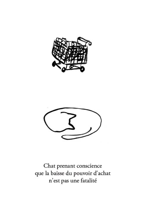 pourvoir_achat_chat